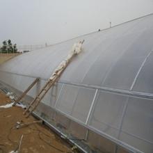 2015 hot sale polycarbonate PC garden greenhouse/ grow house