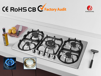 stainless steel gas hob with 5 burner