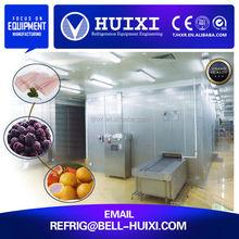 Cherry and Strawberry Fruit Freezer Machine