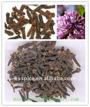 spices cloves