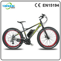 Rear Drive Snow Cruiser electric bike chopper with all battery