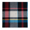 yarn dyed cotton flannel fabric for men shirt for european market