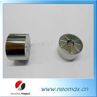 permanent magnetic motor rotor