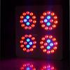 wholesale full spectrum high power 5watt 300w apollo led grow light with good quality