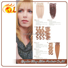 China Clip In Hair Extension Supplier, Top Quality Clip On Hair Extension, Remy Human Clip Hair Extension