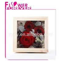 Wholesale Real Preserved Flower