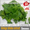 Aimerenergy factory supply high quality ginkgo biloba extract ginkgo biloba extract