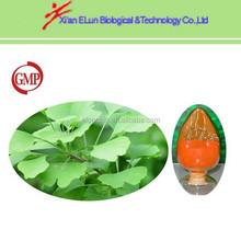 bulk Sophora Japonica Extract 95% Quercetin on sale