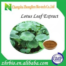 100% Pure Natural High Quality Lotus Leaf Extract 10:1
