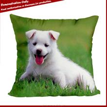Factory OEM custom Photo printing cheap cushion covers 50x50