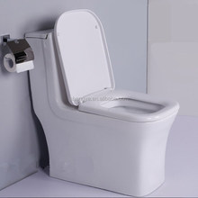 High grade ceramic self-clean siphonic flushing toilet seat