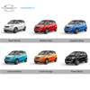 Long River new pure electric vehicle : small SUV car, 5 or 4 passenger seats, speed more than 100km per hour, made in China