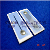 2015 Long Life Time Ozonator Chip for Ozone Machine