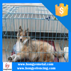 Low Price Dog Kennel Fence Netting