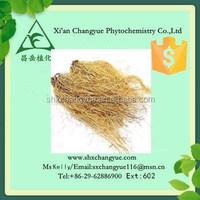 Gold supplier herba asari extract