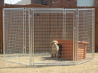 2015 hot sale China factory design cheap chain link dog kennels lowes dog kennels and runsdog run kennels