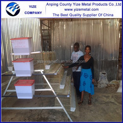 layer egg chicken cage/poultry farm house design export to zimbabwe