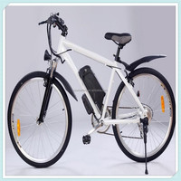 QT01 24Vv 10ah electric bike li ion battery with charger CLB-24V10ah-QT01 Back