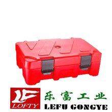 2012 new Plastic car Cooler box