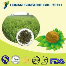 HACCP no addictive organic product sweet tea extract