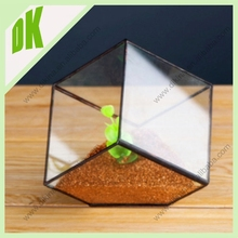 Adorable DIY Projects & Creative Crafts // Succulent Money Tree Crassula Terrarium in Geometric 3D Cube Stained Glass Vase