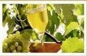 "Selection ""Ca Fratelli"" wine"