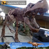 N-W-Y-979-simulation dinosaur fossil movies skeleton model