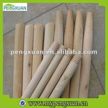 Eucalyptus Wood Logs with Good Quality