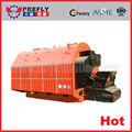 automática industrial de pellets de madera de la caldera de biomasa para la venta