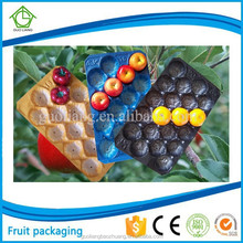 Wholesale Vacuum Formed Blister Packaging Fruit&Meat Industray Use Plastic Food Tray