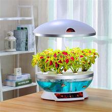 plastic aquarium fish tanks
