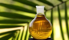 Crude palm oil and its prodcuts