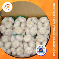 Pure White Garlic From Origin