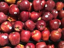 Yantai fuji apple best quality with low price