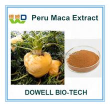 100% Pure Natural Men Sexual Health/Sex Medicines Product Maca Extract 4:1