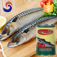 tin cans for food canning fish