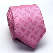 Designer export boys polyester tie set