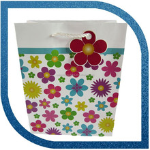 Printing Colorful Paper Bag Shopping with handle