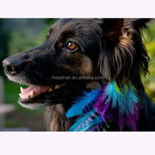 "New fashion for your lovely dogs or cats feather hair decorations , 4""-7"" feather hair decorations"
