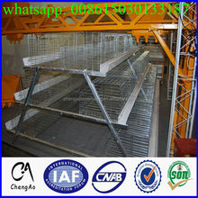 Dubai layer chicken breed poultry farming equipment for chicken layer cage