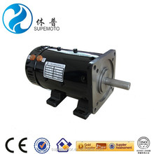 electric car 4kw separately excited DC brush Motor