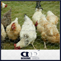 Galvanized hexagonal wire mesh cage for chicken layer