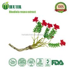 Natural Rosavin 1~5% Powder, Herbal Rhodiola Rosea Extract 5% Salidroside Rosavin