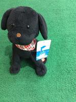 little black dog plush toys