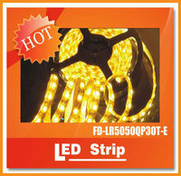 High quality IP65 RGB 30leds/meter 5050 color changing LED Strip