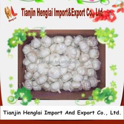 good garlic price in different garlic packaging for garlic import 1