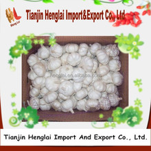 good garlic price in different garlic packaging for garlic import 1