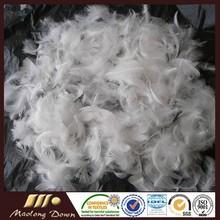 Blanco lavado de pluma de ganso 2-4cm para la venta cojines almohadas de material de relleno un precio más barato