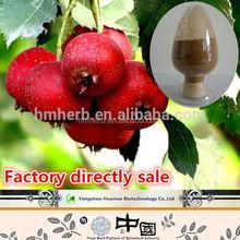 10% 80% organic Flavone powder hawthorn berry extract