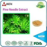 Factory Supply Pine needle P.E./Pine Needle Powder/Pine Bark Extract